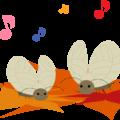 鈴虫とコオロギの活動する季節は同じ?よく似た虫でもこんなに違う